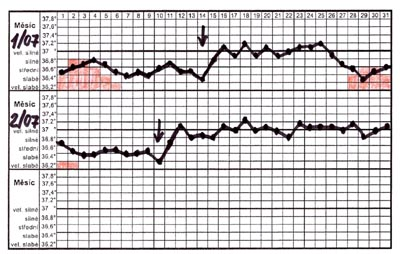 Ovulace, plodné dny - graf